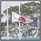 oz-nipon flags
