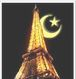 eifful tower and crescent