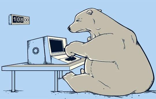 polar bear types