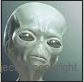 alien bug eyed