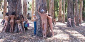 naked tree huggers