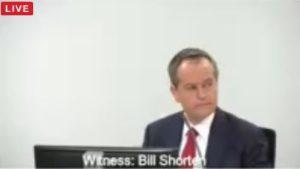 shorten testifies