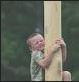 greasy pole