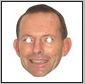 abbott mask