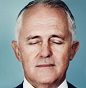 turnbull blind smaller