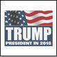 trump lawn sign