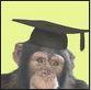 chimp phd