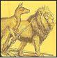 kangaroo lion
