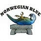 norwegian blue II