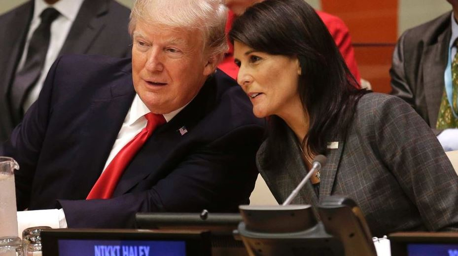 trump haley