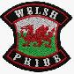 welsh pride II