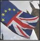 brexit schizo